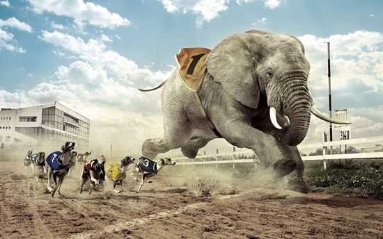 Exceptional Photo Manipulation (4)