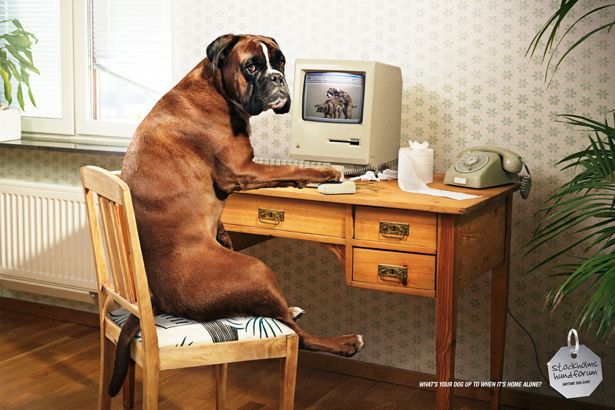creative  funny double meaning print ads lava