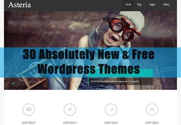 30 Absolutely New & Free WordPress Themes