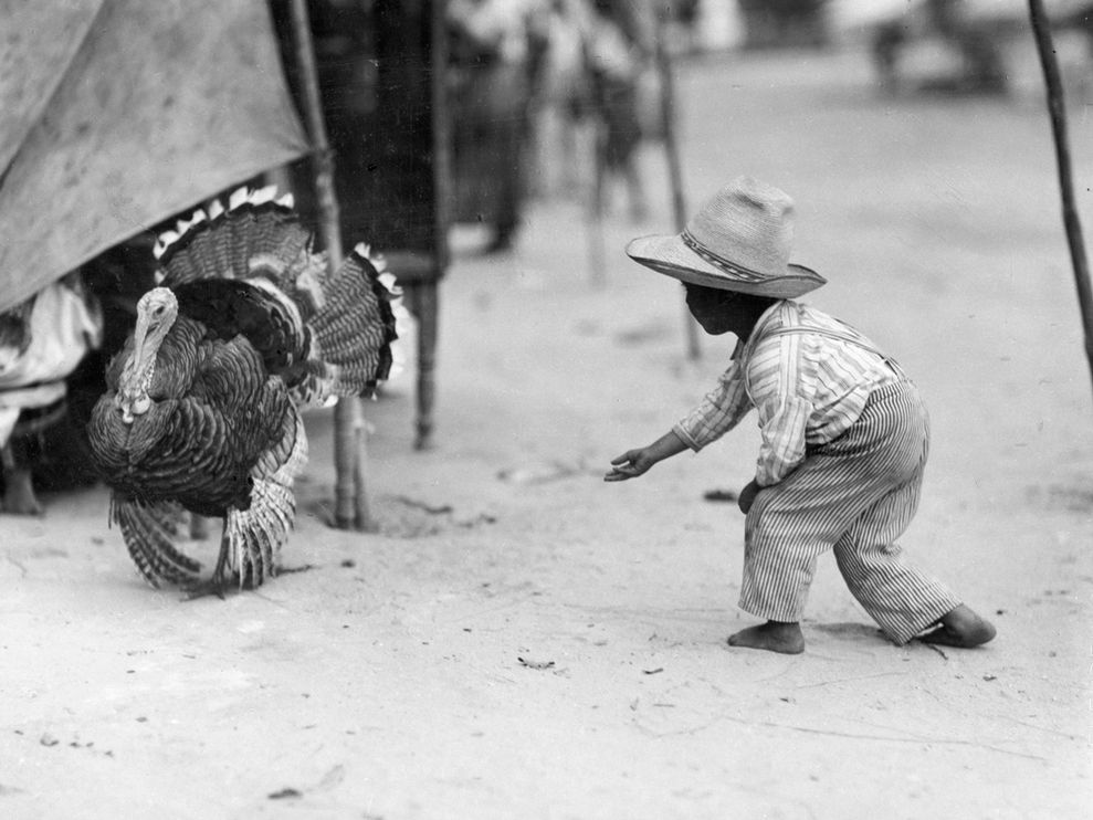 boy turkey guatemala marden 8005 990x742 Most Popular Black & white photos of National Geography