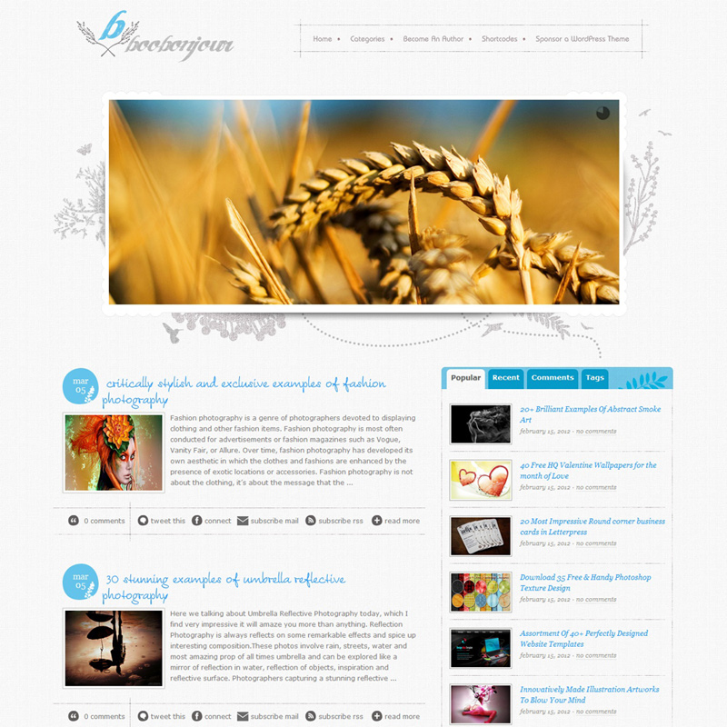 10 Fresh free and premium elegant wordpress themes