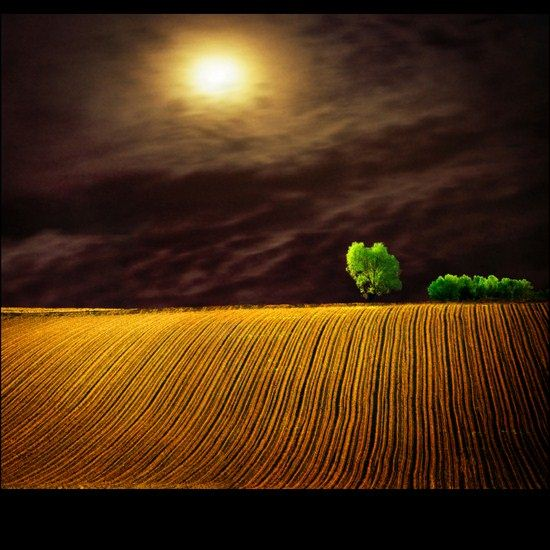 moon field landscape photography