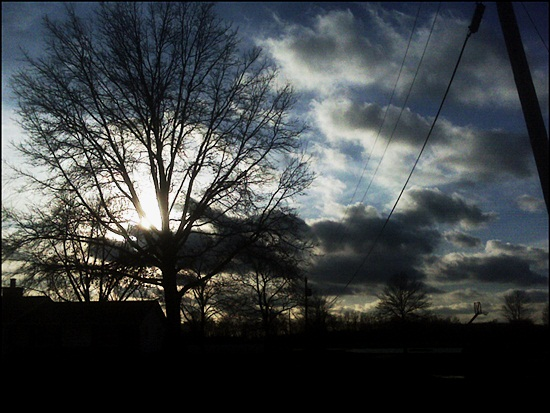 Nature silhoutte photography (6)