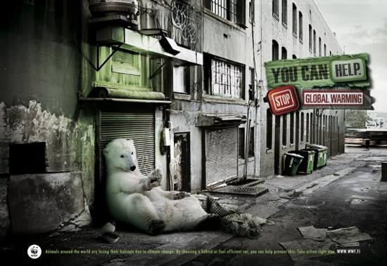 WWF! Homeless Polar bear: print media advertisement