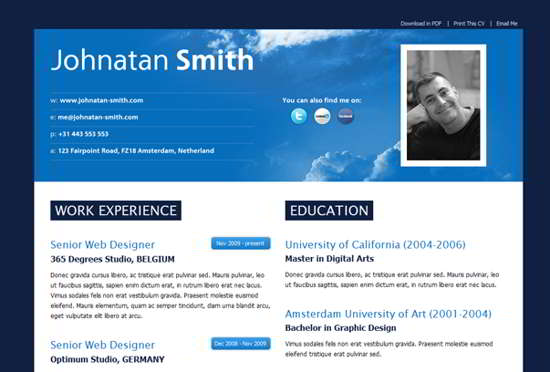 wordpress resume template plugin theme free download