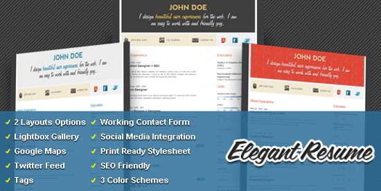 wordpress elegant resume theme