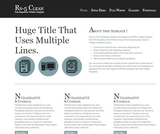 RS-5 Clean Website Template