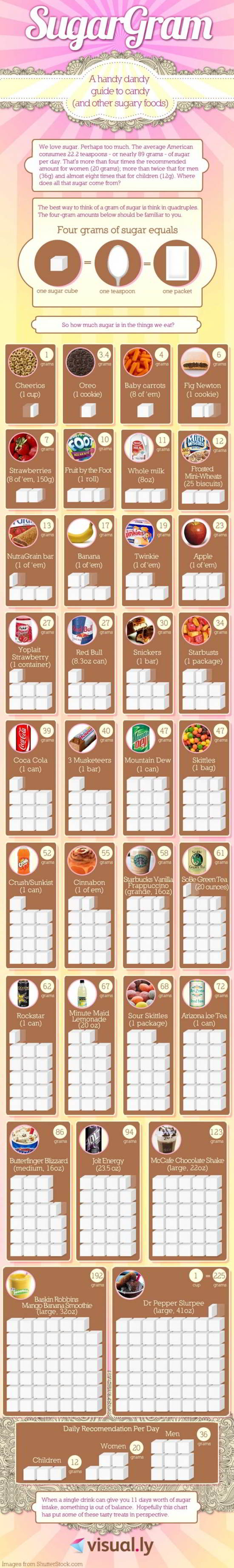 07 Your Guide to Sugar Infographic