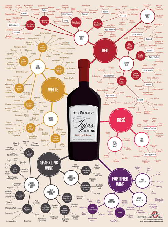 08 The Different Types of Wine Inforgraphic