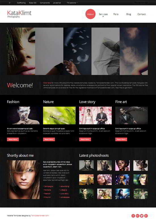 Free Responsive Template for Photography Site