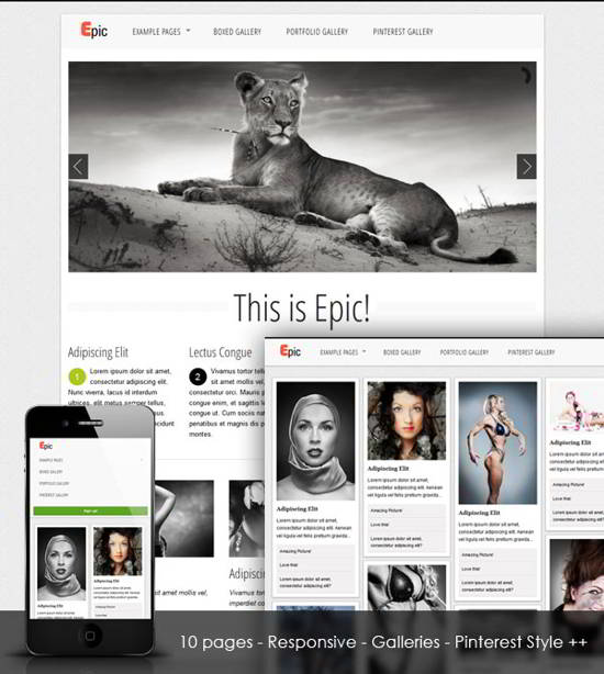 Free Css Template Epic