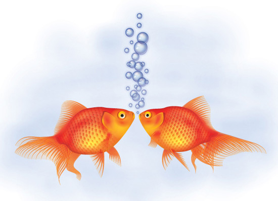 Create a Detailed Goldfish Couple
