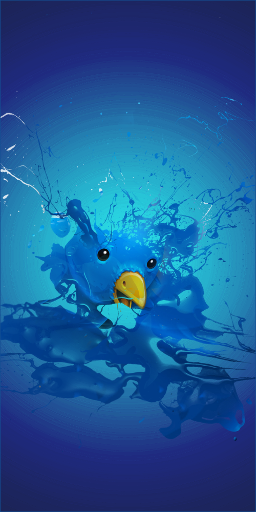 Splash Twitter Bird