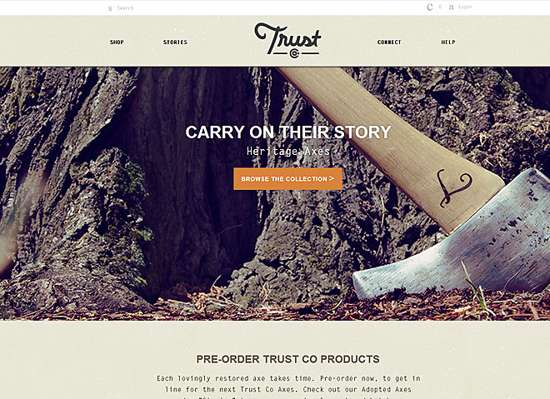 trust co web design