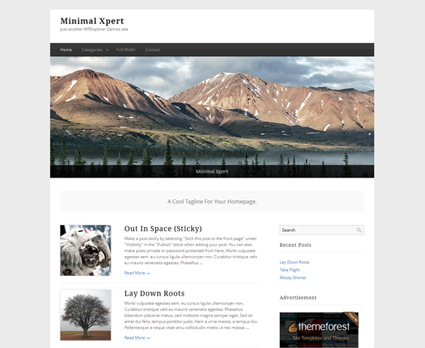 Responsive WordPress Themes (11)