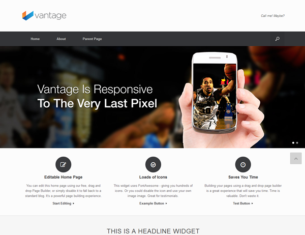Responsive WordPress Themes (7)