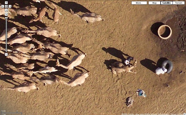 Amazing Google Earth Pictures1