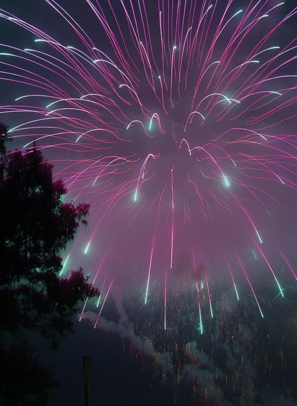 Incredible Firework Pictures5