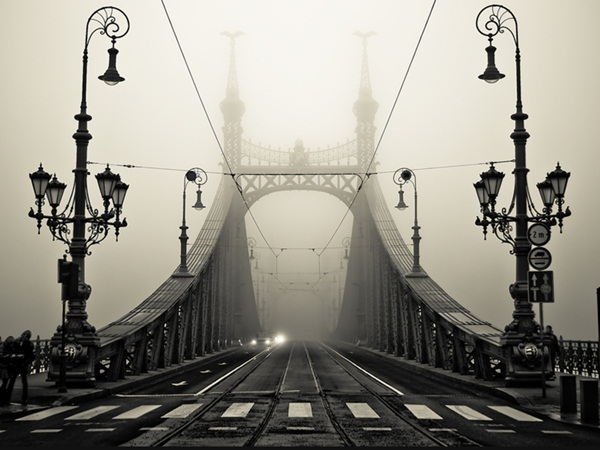 Beautiful Fog Pictures and Photography14