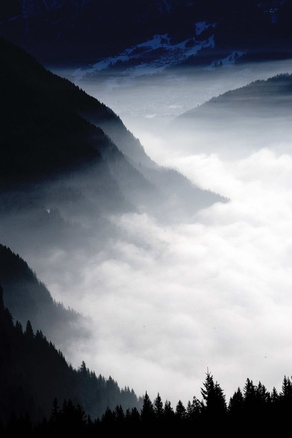 Beautiful Fog Pictures and Photography19