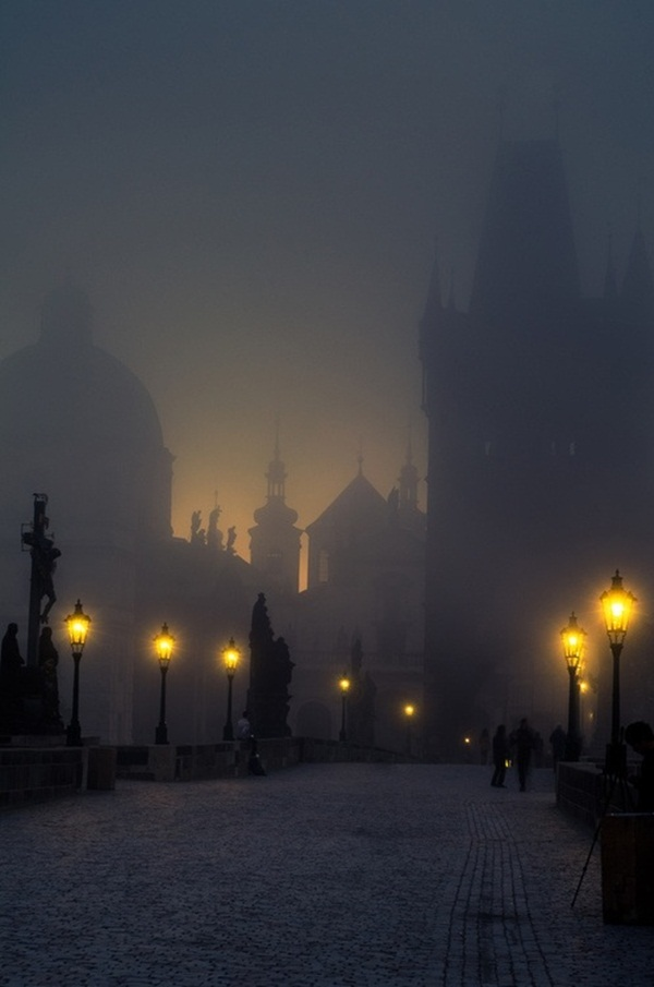 Beautiful Fog Pictures and Photography31