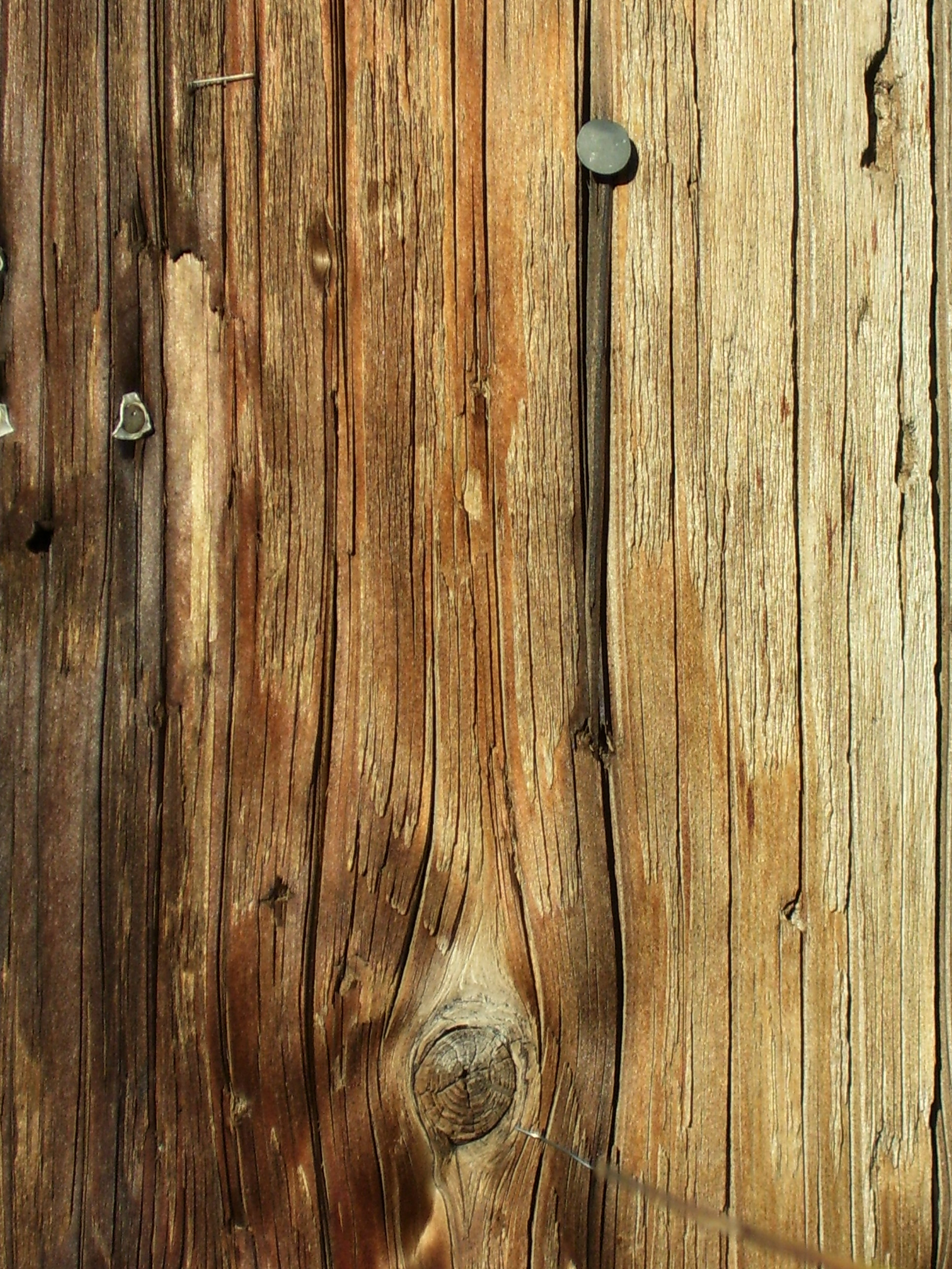Wooden Textures for Designers (21)