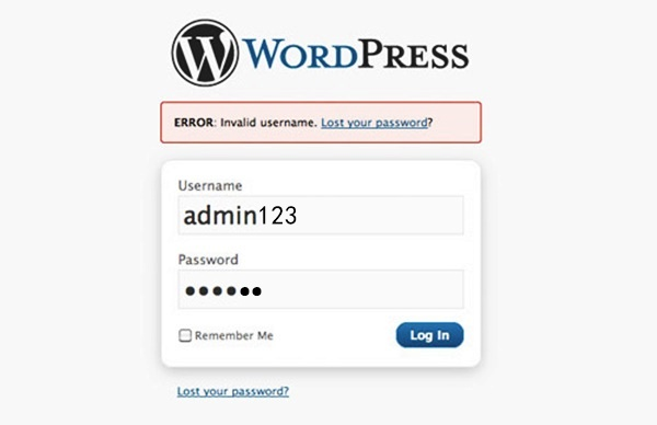 Common WordPress Issues and their Solutions3