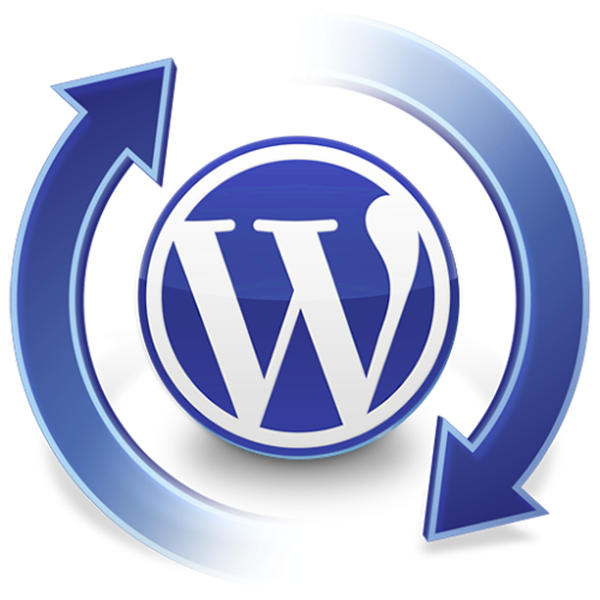 Common WordPress Issues and their Solutions6
