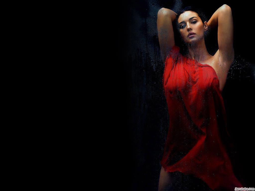 Sexy Monica Bellucci HD Wallpaper (32)