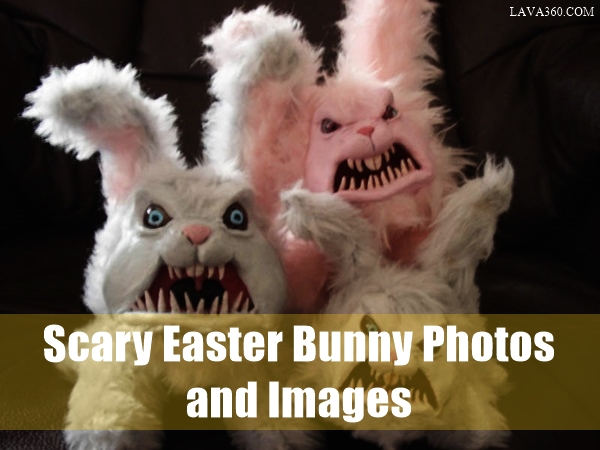 Scary Easter bunny photos and Images (1.1)