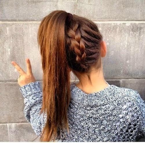 Ponytail Idea 30