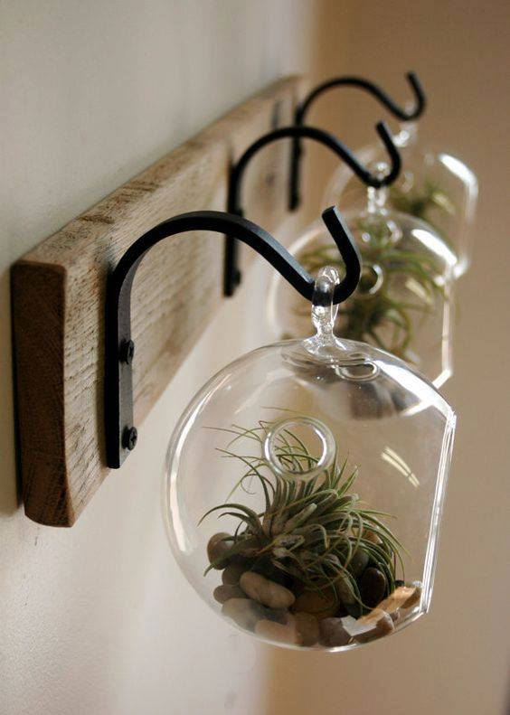 green-house-decoration-ideas-18