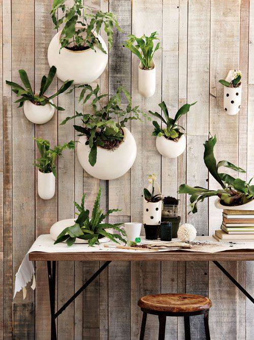 green-house-decoration-ideas-3