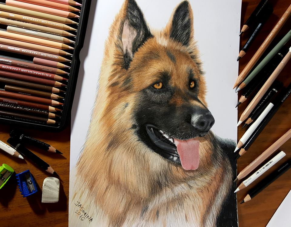 colored pencil artworks