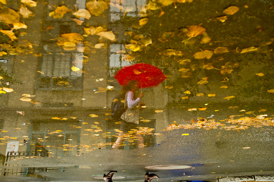 rain reflected photography